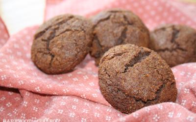 Super Easy Paleo Molasses Spice Cookies